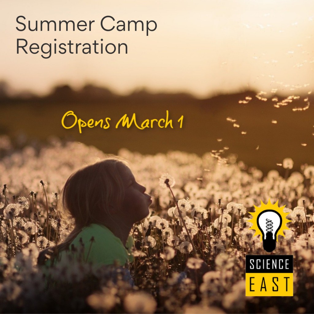 Summer Camp 2020-Teaser F