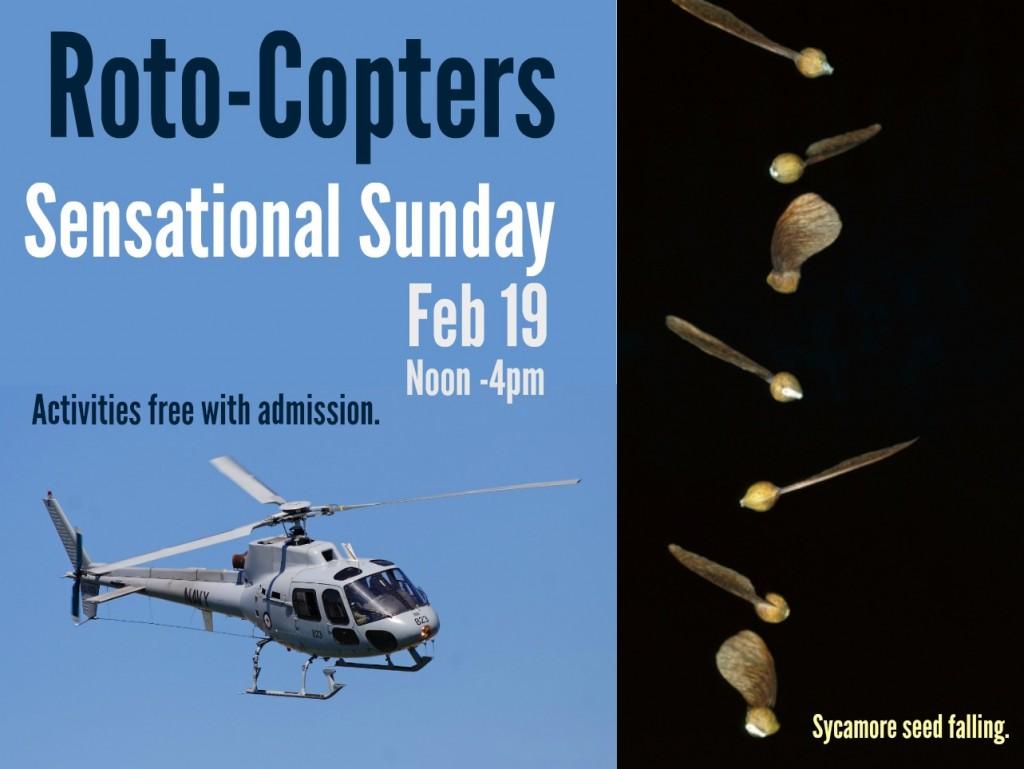 Sensational Sunday rotocopters