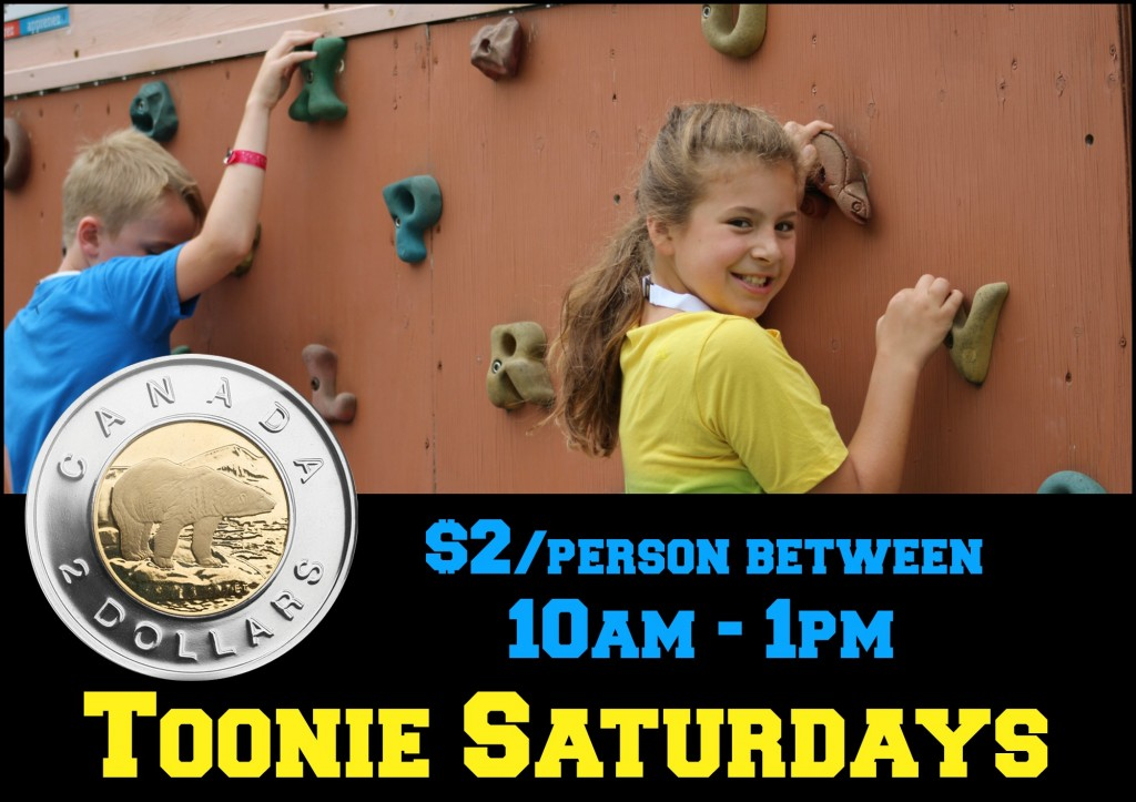 toonie saturdays